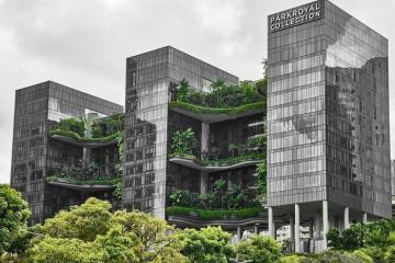 Khách sạn Parkroyal Collection Pickering – Ốc đảo xanh giữa lòng Singapore