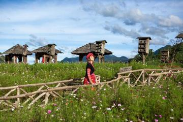 Dừng chân tại 9 khách sạn trung tâm Sapa để khám phá hết văn hóa của xứ sở sương mù